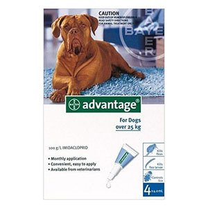 advantage-extra-large-dogs-over-55-lbs-blue.jpg
